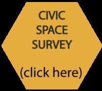 Civic space survey