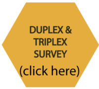 Duplex and triplex survey